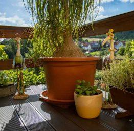 Ferienwohnung-mieten-jena-terrasse-naturschutzgebiet
