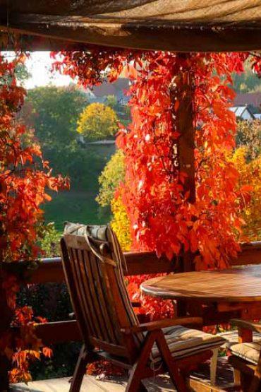 Entspannt in den roten Herbst auf der Terrasse